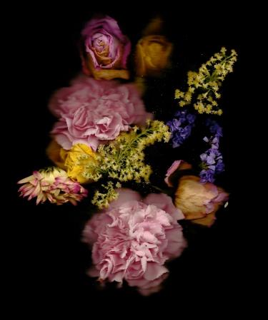 Oscar Parasiego 'Flowers'