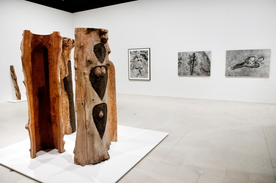 Installation view of Ana Mendieta, Totem Grove, 1985